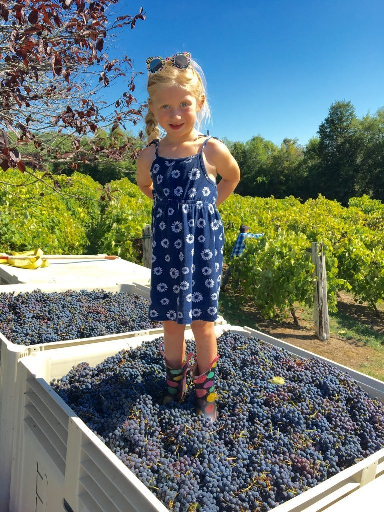 Girl Stomping Tennessee Grapes, 2016